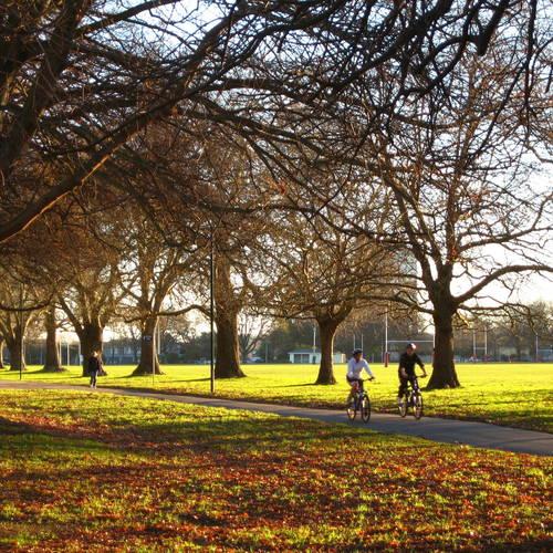 ทัวร์นิวซีแลนด์ นิวซีแลนด์ สวนสาธารณะแฮกลีย์