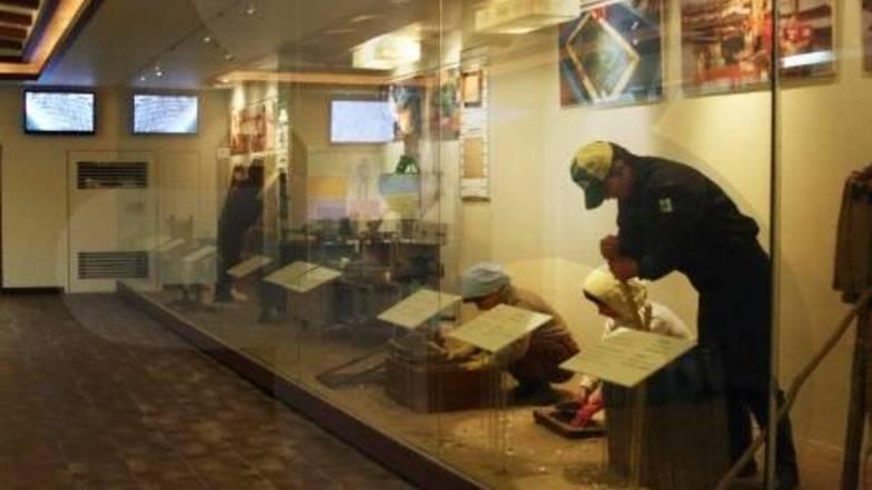 พิพิธภัณฑ์สาหร่ายหมีเทเทรุ