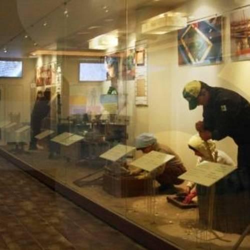 ทัวร์เกาหลี กรุงโซล พิพิธภัณฑ์สาหร่ายหมีเทเทรุ