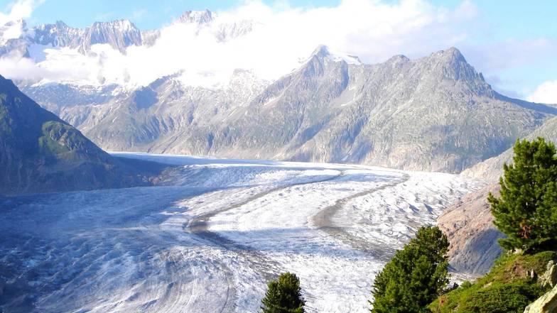 ธารน้ำแข็งอเลิท์ซ กลาเซียร์