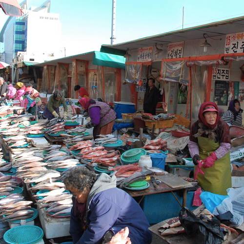 ทัวร์เกาหลี พูซาน ตลาดปลาจากัลจิ หรือ ตลาดปลาชาลกาชิ