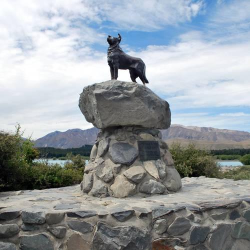 ทัวร์นิวซีแลนด์ นิวซีแลนด์ อนุสาวรีย์สุนัขต้อนแกะคอลลี่