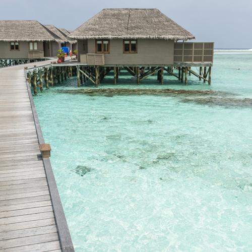 ทัวร์มัลดีฟส์ มัลดีฟส์ Meeru  Island  Resort