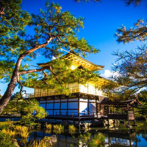 ทัวร์ญี่ปุ่น โอซาก้า ทาคายาม่า วัดคินคาคุจิ