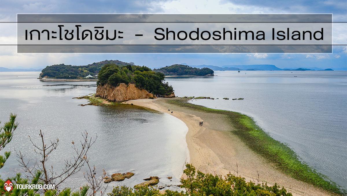 เกาะโชโดชิมะ - Shodoshima Island
