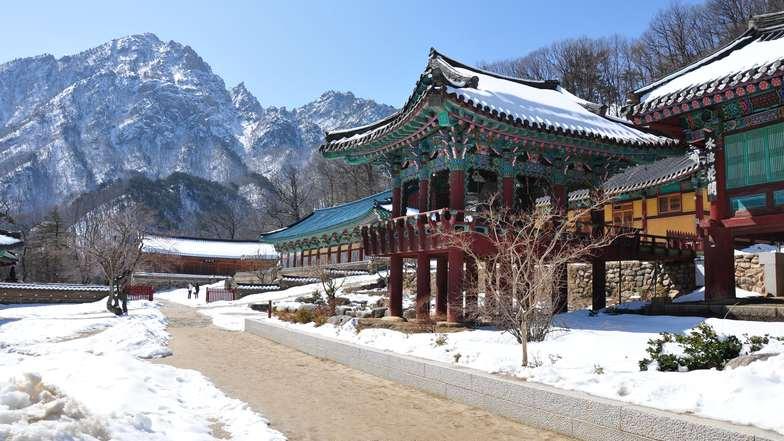 ทัวร์เกาหลี กรุงโซล 5 วัน 3 คืน อุทยานแห่งชาติซอรัคซาน อิสระเล่นสกี บิน Jin Air