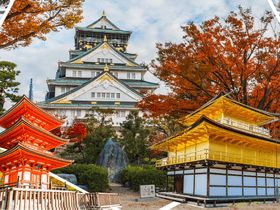 ทัวร์ญี่ปุ่น โอซาก้า เกียวโต  6 วัน 4 คืน  ปราสาทโอซาก้า ชมลิงแช่ออนเซ็น  บิน XJ โอซาก้า เกียวโต Top seller