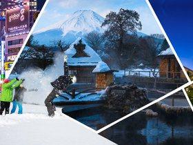 ทัวร์ญี่ปุ่น โตเกียว 5วัน 3คืน หมู่บ้านน้ำใส โอชิโนะฮัคไก เล่นสกี แช่ออนเซ็น บุฟเฟ่ต์ขาปูยักษ์ บินTZ โตเกียว แพ็คเกจทัวร์ลดราคา  Top seller แพ็คเกจเทศกาลตรุษจีน  เที่ยววันหยุด มาฆบูชา โปรไฟไหม้-ทัวร์ไฟไหม้