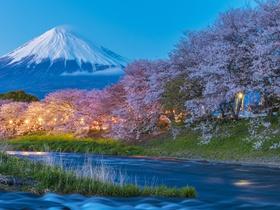 ทัวร์ญี่ปุ่น โอซาก้า โตเกียว 6วัน  3 คืน  มิชิมะสกาย วอล์ค  สวนดอกไม้ฮามามัตสึ บิน TG  โอซาก้า โตเกียว ทัวร์โอซาก้า / ทัวร์ญี่ปุ่น โตเกียว โอซาก้า ทัวร์ Premium ทัวร์ต้อนรับปิดเทอม