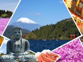 ทัวร์ญี่ปุ่น โตเกียว โอซาก้า  6 วัน 3 คืน ทุ่งพิงค์มอส ทะเลสาบโมโตสุโกะ  เท็มโปซาน  บิน XJ  โตเกียว โอซาก้า ทัวร์โอซาก้า / ทัวร์ญี่ปุ่น โตเกียว โอซาก้า