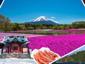ทัวร์ญี่ปุ่น โตเกียว  5 วัน 3 คืน ทุ่งพิ้งค์มอส ทะเลสาบโมโกโตะ บิน  XJ  โตเกียว Top seller ทัวร์ญี่ปุ่น ราคาถูก ทัวร์ราคาสุดคุ้ม ทัวร์ต้อนรับปิดเทอม