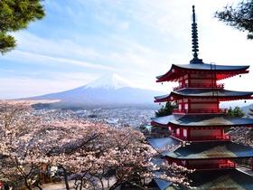 ทัวร์ญี่ปุ่น โอซาก้า โตเกียว 5 วัน 3 คืน ชมเทศกาลดอกทิวลิป ยูนิเวอร์แซล สตูดิโอ เจแปน  บิน TG  โอซาก้า โตเกียว แพ็คเกจทัวร์ลดราคา  ทัวร์ญี่ปุ่น ราคาถูก ทัวร์โอซาก้า / ทัวร์ญี่ปุ่น โตเกียว โอซาก้า ทัวร์ราคาสุดคุ้ม