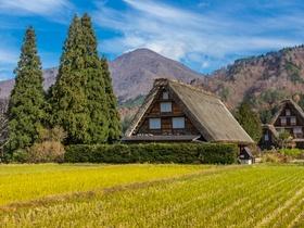 ทัวร์ญี่ปุ่น โอซาก้า ทาคายาม่า 6 วัน 4 คืน หมู่บ้านมรดกโลกชิราคาวาโกะ ชมซากุระ บิน XJ โอซาก้า ทาคายาม่า เที่ยวช่วงปิดเทอมฤดูร้อน ทัวร์ชมดอกซากุระ  วันจักรี ทัวร์สงกรานต์