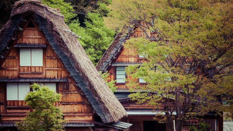 ทัวร์ญี่ปุ่น โอซาก้า ทาคายาม่า 5 วัน 3 คืน หมู่บ้านชิราคาวะโกะ ชมซากุระ บิน ไทยแอร์เอเชียเอกซ์