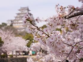 ทัวร์ญี่ปุ่น ฟุกุโอกะ 5 วัน 3 คืน หมู่บ้านยูฟูอิน ชมดอกซากุระ บิน VN ฟุกุโอกะ แพ็คเกจทัวร์ลดราคา  เที่ยวช่วงปิดเทอมฤดูร้อน