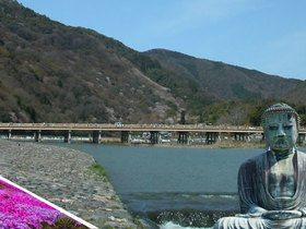 ทัวร์ญี่ปุ่น โตเกียว โอซาก้า  7 วัน 4 คืน ทุ่งพิงค์มอส ทะเลสาบโมโตสุโกะ หลวงพ่อโตคามาคูระ  บิน XJ  โตเกียว โอซาก้า แพ็คเกจทัวร์ขายดี ทัวร์ญี่ปุ่น ราคาถูก ทัวร์โอซาก้า / ทัวร์ญี่ปุ่น โตเกียว โอซาก้า ทัวร์ราคาสุดคุ้ม