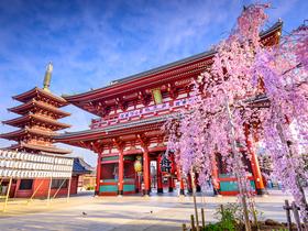 ทัวร์ญี่ปุ่น โตเกียว 5 วัน 3 คืน หมู่บ้านโอชิโนะ ฮักไก ชมซากุระ  บิน TZ โตเกียว เที่ยวช่วงปิดเทอมฤดูร้อน วันจักรี