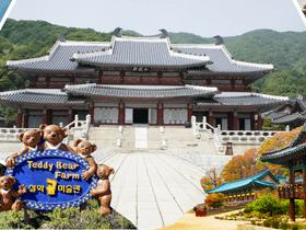 """ทัวร์เกาหลี กรุงโซล  5 วัน 3 คืน (เมษายน เทศกาลชมดอกซากุระ """"เกาะยออิโด"""") บิน LJ กรุงโซล ทัวร์วันแรงงาน ทัวร์ชมดอกซากุระ  วันจักรี ทัวร์ราคาสุดคุ้ม ทัวร์ต้อนรับปิดเทอม"""