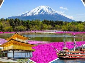 ทัวร์ญี่ปุ่น โอซาก้า โตเกียว 5  วัน 4 คืน  ชมซากุระ [22 มี.ค.-15 เม.ย] หรือ พิ้งมอส [16 เม.ย – 20 พ.ค.] บิน XJ  โอซาก้า โตเกียว เที่ยวช่วงปิดเทอมฤดูร้อน ทัวร์ชมดอกซากุระ  ทัวร์โอซาก้า / ทัวร์ญี่ปุ่น โตเกียว โอซาก้า ทัวร์ Premium ทัวร์ราคาสุดคุ้ม