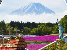 ทัวร์ญี่ปุ่น โตเกียว  6 วัน 3 คืน ชมซากุระ ภูเขาไฟฟูจิ ชั้น 5 บิน TG  โตเกียว ทัวร์ชมดอกซากุระ  เที่ยวช่วงปิดเทอมฤดูร้อน ทัวร์ญี่ปุ่น ราคาถูก วันจักรี ทัวร์ Premium