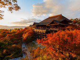 ทัวร์ญี่ปุ่น โอซาก้า เกียวโต 5 วัน 3 คืน วัดคิโยมิสึ  วัดคินคะคุจิ  ศาลเจ้าฟูชิมิอินาริ  บิน XJ  โอซาก้า เกียวโต ทัวร์โอซาก้า / ทัวร์ญี่ปุ่น โตเกียว โอซาก้า