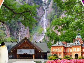 ทัวร์ญี่ปุ่น ฮอกไกโด 5 วัน 3 คืน ทุ่งพิงค์มอส (ชิบะซากุระ) สวนทิวลิป  บิน TG ฮอกไกโด ทัวร์ชมดอกซากุระ  เทศกาลทุ่งดอกทิวลิป ทัวร์ฮอกไกโด