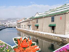 ทัวร์ญี่ปุ่น ฮอกไกโด 6 วัน 4 คืน สวนดอกทิวลิป ชมทุ่งพิงค์มอส บิน  HX ฮอกไกโด ทัวร์ชมดอกซากุระ  เทศกาลทุ่งดอกทิวลิป ทัวร์ฮอกไกโด