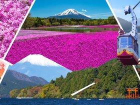ทัวร์ญี่ปุ่น โตเกียว 5 วัน 3 คืน ทุ่งดอกพิงค์มอส นั่งกระเช้าคาชิคาชิ บิน XJ โตเกียว ทัวร์วันแรงงาน ทัวร์ชมดอกซากุระ