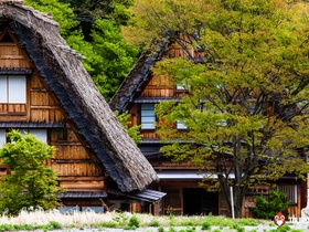ทัวร์ญี่ปุ่น โตเกียว ทาคายาม่า 5 วัน 4 คืน เทศกาลชมดอกทิวลิป  หมู่บ้านมรดกโลกชิราคาวาโกะ บิน XW โตเกียว ทาคายาม่า  วันจักรี