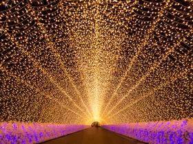 ทัวร์ญี่ปุ่น โตเกียว โอซาก้า 6 วัน 4 คืน  เทศกาล NABANA NO SATO ชมซากุระ บิน XJ โตเกียว โอซาก้า Top seller เที่ยวช่วงปิดเทอมฤดูร้อน ทัวร์ชมดอกซากุระ  ทัวร์ญี่ปุ่น ราคาถูก ทัวร์ราคาสุดคุ้ม
