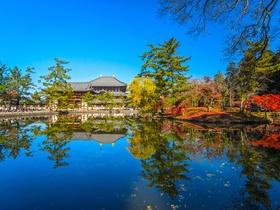 ทัวร์ญี่ปุ่น นาโกย่า ทาคายาม่า โตเกียว 6 วัน 3 คืน  ภูเขาไฟฟูจิ ชั้น 5 (ตามสภาพอากาศ ) บิน TG  นาโกย่า ทาคายาม่า โตเกียว ทัวร์สงกรานต์ ทัวร์ญี่ปุ่น ราคาถูก ทัวร์ราคาสุดคุ้ม