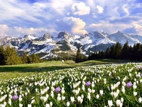 ทัวร์สวิตเซอร์แลนด์ โลซานน์ มองเทรอซ์ เซอร์แมท กรุงเจนีวา 7 วัน 4 คืน พิชิต 2 เขา ยอดเขาจุงเฟรา เขากลาเซียร์ 3000 บิน TG สวิส ทัวร์ Premium ทัวร์ราคาสุดคุ้ม ทัวร์สวิตเซอร์แลนด์