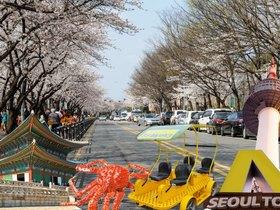 ทัวร์เกาหลี กรุงโซล 5 วัน 3 คืน สวนสนุกเอเวอร์แลนด์ ปั่น Rail Bike ชมเทศกาลดอกซากุระ (ช่วงวันที่ 10 - 15 เมษายน 60 )  บิน XJ กรุงโซล