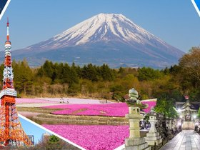ทัวร์ญี่ปุ่น โตเกียว 5 วัน 3 คืน ภูเขาไฟฟูจิ  ทุ่งพิงค์มอส(ชิบะซากุระ) บิน TZ โตเกียว เที่ยวช่วงปิดเทอมฤดูร้อน ทัวร์ชมดอกซากุระ  เที่ยววันหยุด วิสาขบูชา ทัวร์ราคาสุดคุ้ม