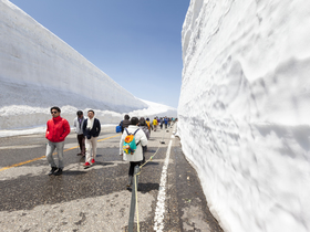 ทัวร์นาโกย่า ทาคายาม่า  5 วัน 3 คืน หมู่บ้านชิราคาวะโกะ กำแพงหิมะ เจแปน แอลป์ บิน  JL  นาโกย่า ทาคายาม่า