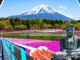 ทัวร์ญี่ปุ่น โตเกียว 5 วัน 3 คืน  ภูเขาไฟฟูจิ  ทุ่งดอกพิงค์มอส บิน  TZ โตเกียว ทัวร์ชมดอกซากุระ