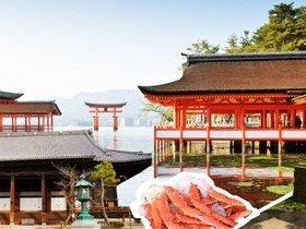 ทัวร์ญี่ปุ่น โอซาก้า เกียวโต โกเบ  4วัน 3 คืน อามาโนะฮาชิดาเตะ  วัดชิออนจิ  บิน TZ  โอซาก้า เกียวโต Top seller ทัวร์ วันแม่ เที่ยววันหยุด ปิยมหาราช ทัวร์โอซาก้า / ทัวร์ญี่ปุ่น โตเกียว โอซาก้า ทัวร์ราคาสุดคุ้ม