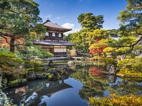 ทัวร์ญี่ปุ่น โอซาก้า นาโกย่า ชิราคาวาโกะ เกียวโต  5 วัน 4 คืน หมู่บ้านชิราคาวาโกะ ฟาร์มดอกไม้ Bokka No Sato บิน TZ โอซาก้า นาโกย่า วันที่ 13 ตุลาคม เนื่องในวันคล้ายวันสวรรคต พระบาทสมเด็จพระปรมินทรมหาภูมิพลอดุลยเดช ทัวร์ วันแม่ วันอาสาฬหบูชา / วันเข้าพรรษา ทัวร์ญี่ปุ่น ราคาถูก ทัวร์ราคาสุดคุ้ม