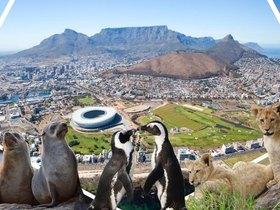 ทัวร์แอฟริกาใต้ 8 วัน 5 คืน ท่องป่าซาฟารี  Table Mountain  บิน  SQ แอฟริกาใต้ ทัวร์เทศกาลวันเด็ก วันอาสาฬหบูชา / วันเข้าพรรษา