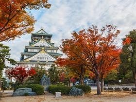 ทัวร์ญี่ปุ่น โอซาก้า โตเกียว 5 วัน 4 คืน ภูเขาไฟฟูจิ ปราสาทโอซาก้า บิน TZ โอซาก้า โตเกียว วันหยุดเทศกาล เฉลิมพระชนมพรรษารัฐกาลที่ 10 ทัวร์ วันแม่ ทัวร์โอซาก้า / ทัวร์ญี่ปุ่น โตเกียว โอซาก้า