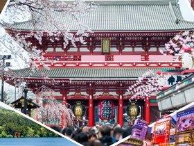 ทัวร์ญี่ปุ่น โตเกียว 5 วัน 3 คืน  ภูเขาไฟฟูจิ ล่องเรือทะเลสาบอาชิ บิน  XJ  โตเกียว วันหยุดเทศกาล เฉลิมพระชนมพรรษารัฐกาลที่ 10 วันอาสาฬหบูชา / วันเข้าพรรษา ทัวร์ วันแม่