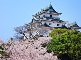 ทัวร์ญี่ปุ่น โอซาก้า วาคายาม่า  5 วัน 4 คืน เกาะหินแว่นตา  ปราสาทวาคายาม่า  บิน TG โอซาก้า วากายาม่า วันหยุดเทศกาล เฉลิมพระชนมพรรษารัฐกาลที่ 10 ทัวร์ญี่ปุ่น ราคาถูก ทัวร์ราคาสุดคุ้ม