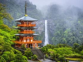 ทัวร์ญี่ปุ่น นาโกย่า วากายาม่า 6 วัน 4 คืน พิพิธภัณฑ์นินจาอิกะ  ปราสาทวาคายาม่า  บิน TG นาโกย่า ทาคายาม่า  ทัวร์ญี่ปุ่น ราคาถูก ทัวร์ราคาสุดคุ้ม