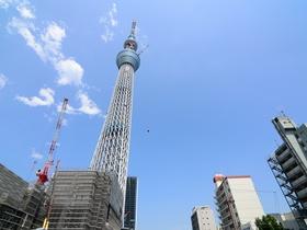 ทัวร์ญี่ปุ่น โตเกียว  5 วัน 3 คืน พระใหญ่ไดบุทสึ ภูเขาไฟฟูจิ บิน TZ  โตเกียว วันหยุดเทศกาล เฉลิมพระชนมพรรษารัฐกาลที่ 10 Top seller ทัวร์ วันแม่ ทัวร์ญี่ปุ่น ราคาถูก ทัวร์ราคาสุดคุ้ม