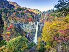 ทัวร์ญี่ปุ่น โตเกียว นิคโก้ 5 วัน 3 คืน น้ำตกเคกอน  ซุ้มประตูโยเมมง  บิน TZ โตเกียว นิคโก้ วันที่ 13 ตุลาคม เนื่องในวันคล้ายวันสวรรคต พระบาทสมเด็จพระปรมินทรมหาภูมิพลอดุลยเดช Top seller ทัวร์ญี่ปุ่น ราคาถูก ทัวร์ใบไม้เปลี่ยนสี ทัวร์ราคาสุดคุ้ม
