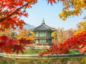 ทัวร์เกาหลี กรุงโซล 4 วัน 3 คืน  ชมใบไม้เปลี่ยนสี สวนดอกหญ้า ฮานึลปาร์ค บิน XJ กรุงโซล Top seller ทัวร์ราคาสุดคุ้ม