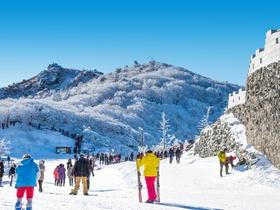 ทัวร์เกาหลี กรุงโซล 5 วัน 3 คืน ฤดูหนาว  ขึ้นลิฟท์ชมวิว Lotte World Tower พักสกีรีสอร์ท บิน TG กรุงโซล Top seller ทัวร์ต้อนรับวันปีใหม่ ทัวร์ต้อนรับเทศกาลวันพ่อ เที่ยววันหยุด รัฐธรรมนูญ ทัวร์สกีรีสอร์ท ทัวร์ราคาสุดคุ้ม