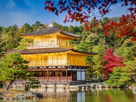 ทัวร์ญี่ปุ่น โอซาก้า ทาคายาม่า  เกียวโต  5 วัน 3 คืน  หมู่บ้านมรดกโลกชิราคาวาโกะ  วัดคินคาคุจิ  บิน XJ  โอซาก้า ทาคายาม่า วันที่ 13 ตุลาคม เนื่องในวันคล้ายวันสวรรคต พระบาทสมเด็จพระปรมินทรมหาภูมิพลอดุลยเดช ทัวร์ชมดอกซากุระ  ทัวร์ใบไม้เปลี่ยนสี เที่ยววันหยุด ปิยมหาราช ทัวร์ราคาสุดคุ้ม