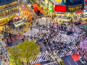 ทัวร์ญี่ปุ่น โตเกียว  5 วัน 3 คืน สวนดอกไม้ฮานะโนะมิยาโกะ  โอวาคุดานิ บิน TZ  โตเกียว Top seller ทัวร์ วันแม่ ทัวร์ราคาสุดคุ้ม