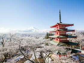 ทัวร์ญี่ปุ่น โตเกียว 5 วัน 3 คืน เล่นสกี ลานสกี  YETI SKI RESORT บิน XW  โตเกียว  ทัวร์เทศกาลหิมะ Top seller ทัวร์ต้อนรับเทศกาลวันพ่อ ทัวร์ต้อนรับวันปีใหม่ เที่ยววันหยุด รัฐธรรมนูญ โปรไฟไหม้-ทัวร์ไฟไหม้ ทัวร์ราคาสุดคุ้ม ทัวร์โตเกียว | ทัวร์ญี่ปุ่น โตเกียว